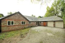 Detached Bungalow for sale in Windmill Lane, Appleton...