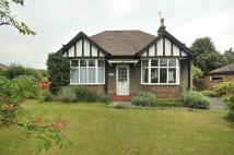 Detached Bungalow in Chester Road...