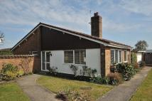 Detached Bungalow for sale in Willow Lane, Appleton...