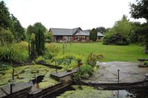 Detached Villa for sale in The Paddocks, Whitegate...