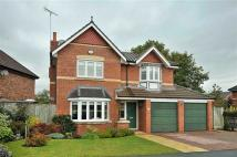 Detached house to rent in Sandington Drive...