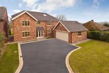 6 bed new house in Dunnocksfold Road...