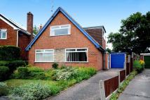 3 bed Detached Bungalow to rent in Spinner Crescent...