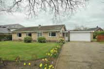 Detached Bungalow in Landswood Park, Hartford...