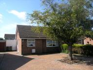 Semi-Detached Bungalow to rent in Paddock Gardens...