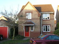 3 bed Detached house to rent in Foxglove Road...