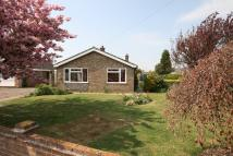 3 bed Detached Bungalow to rent in POPLAR WAY, Attleborough...