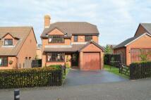 Detached house in Broadfields, Norton Cross