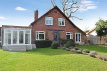 4 bed Detached house for sale in Straight Road...