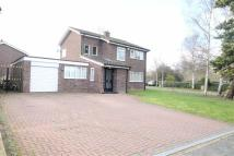 4 bed Detached home to rent in Braunston, Woughton Park...