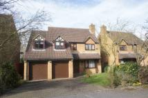 5 bed Detached home in Little Meadow, Loughton...