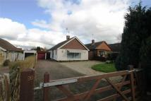 Detached Bungalow to rent in London Road, Loughton...