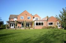 4 bed Detached house in Dersingham