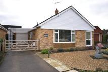 Detached Bungalow in Dersingham