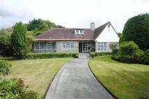 Detached Bungalow for sale in Heath Hey, Woolton, L25