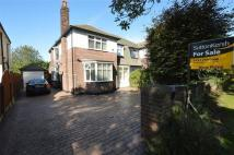 4 bed semi detached home in Queens Drive...