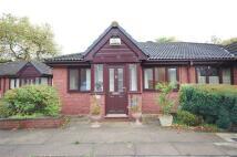 2 bed Semi-Detached Bungalow in Larch Close, Cressington...