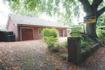3 bedroom Detached Bungalow in Knowsley Road...