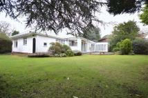 Detached Bungalow for sale in Allerton Road...