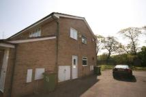 Apartment to rent in Bexley Drive, Normanby