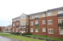 Flat to rent in Hillbrook Crescent...