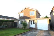 Busby Way Detached house to rent