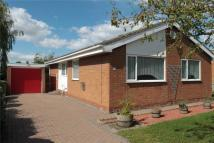 Bungalow for sale in Lingfield Road, Yarm