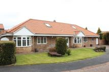 Bungalow for sale in Woodvale, Coulby Newham