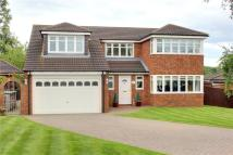 Detached house for sale in Rowan Grove, Stainton