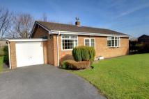 Bungalow for sale in Tanton Close, Seamer