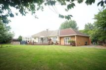 Bungalow in Birkdale Road, Hartburn