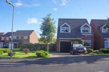 3 bed Detached property in Dovedale Close, Norton