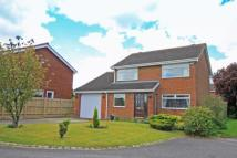 Detached home in Dunelm Road, Elm Tree