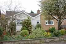 3 bedroom Detached Bungalow for sale in Vernon Crescent...