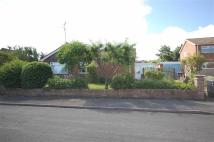 3 bed Detached Bungalow in Hereford Road...