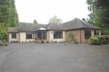 Detached Bungalow for sale in Whitworth Drive...