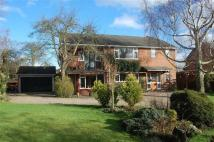 Detached property for sale in Caythorpe Road...