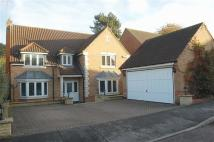 Detached property in Murdoch Close...