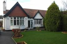 Semi-Detached Bungalow for sale in Nottingham Road...