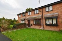 Terraced property to rent in Lancaster Park...