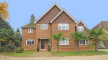 Detached house for sale in Portsmouth Road...