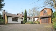 Old Bisley Road Detached property for sale