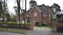 Detached property for sale in Kingsley Avenue...