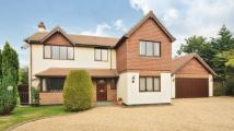 Detached property for sale in Beaufront Road...