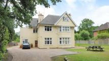 Flat for sale in Brackendale Close...