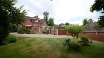 Detached property for sale in Westwood Glen, Tilehurst...