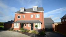 4 bedroom semi detached home for sale in Holymead, Calcot, Reading