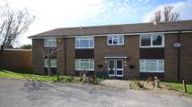 2 bedroom Flat in Lower Armour Road...