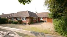 Bungalow for sale in Clayhill Road...