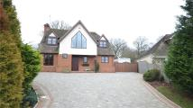 Beech Road Detached property for sale